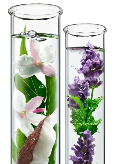 Two Glass Tubes with Vanilla and Lavender