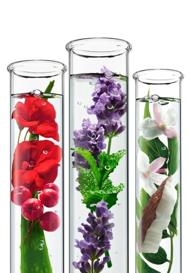 Three Beakers with Geranium, Lavender, and Vanilla