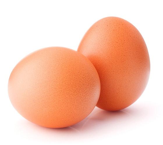 Dos huevos sobre un espacio blanco