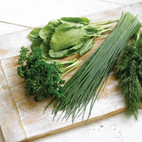 Knorr recipe herbs