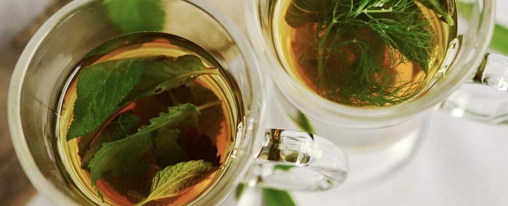 How To Make A Classic Moroccan Mint Tea With Lipton Lipton