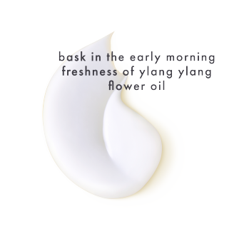 PNG - Pack Image Sensory Coconut Oil Ylang Ylang Conditioner
